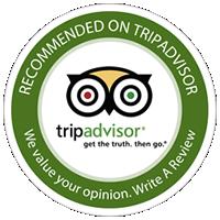 Gorilla Expeditions on Trip Advisor